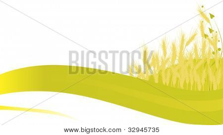 illustration with wheat silhouettes on white background