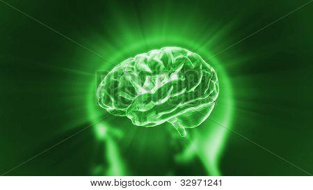 Cérebro verde Flare