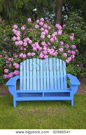 A Blue Garden Chair.