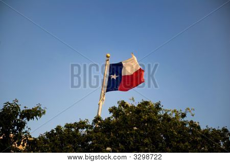 Texas Flag Flowing In The Breeze