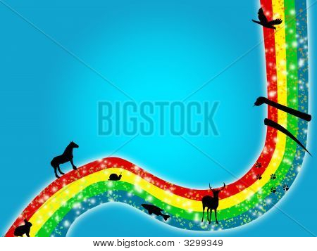 Animals Rainbow