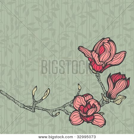 Magnolia branch of flowers, hand drawn original style vector illustration