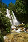 foto of hydrophytes  - Beautiful waterfall amidst lush green vegetation in Northern Colombia - JPG
