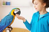 Portrait of a kid girl with her domestic ara parrot poster