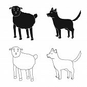 Vector Design Of Breeding And Kitchen Symbol. Set Of Breeding And Organic Vector Icon For Stock. poster