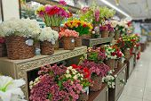 Artificial Flowers Are Sold In The Store. In Baskets Are Bouquets Of Various Artificial Flowers For  poster