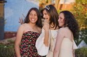 image of quinceanera  - Hispanic girl and friends at Quinceanera - JPG