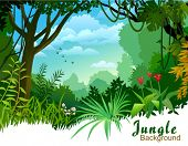 image of jungle flowers  - AMAZON JUNGLE TREES AND WILDERNESS - JPG