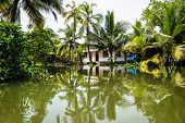 House In The Kerala Backwaters In The Lush Jungle Along The Canal With Bright Reflections, Alappuzha poster