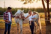 Happy family with girl petting horses in countryside  poster