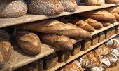 Assortments Of Bread, Freshly Baked On Wooden Shelves. Piles Of Breads. Bakery Shelves Full Of Bread poster