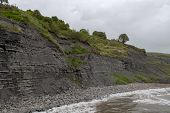 View Of The Blue Lias Cliff At Lyme Regis In Dorset Which Is Famous For Fossil Hunting poster