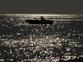 picture of full_moon  - Little fishing boat on the sea at night lit by the moonlight - JPG