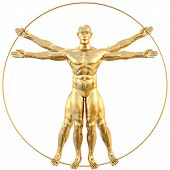 stock photo of leonardo da vinci  - vitruvian man from gold - JPG