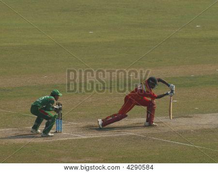 Cricket Shots Of Batsmen