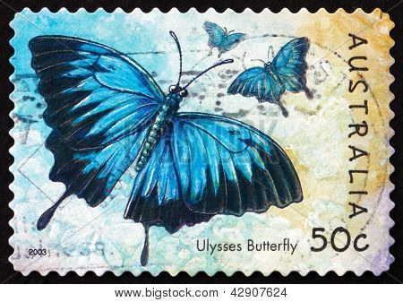 Postage Stamp Australia 2003 Ulysses Butterfly