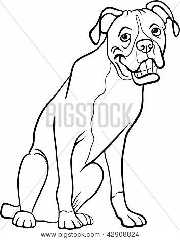 Boxer Dog Cartoon For Coloring Book