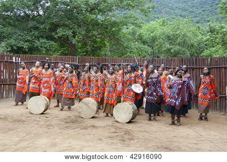 Swazi show