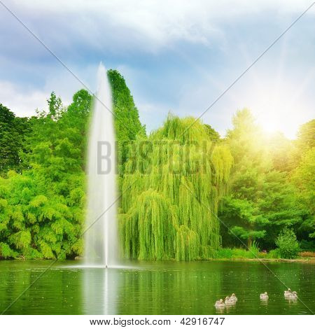 large fountain in the lake sunlit