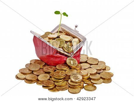 Old Red Purse With Golden Coins And Gentle Green Sprout. Isolated On White Background.