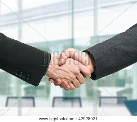 Businessmen shaking hands to seal a deal