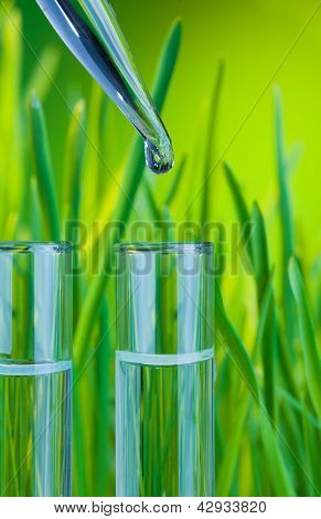 A Drop Of Clean Water In Test Tube