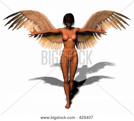 An Angel In Lingerie