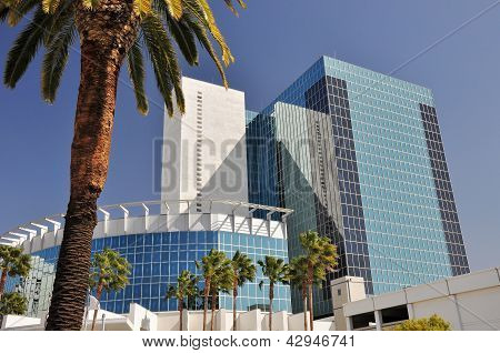 Modern buildings and palm trees