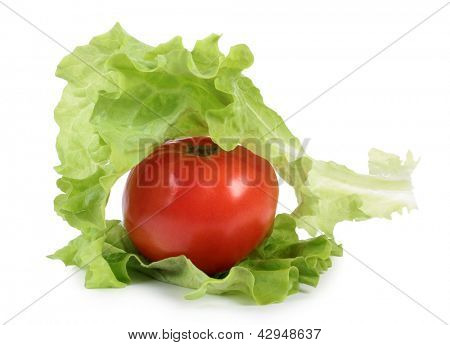 Color photo of salad leaves and tomato