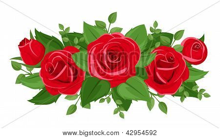 Red roses, rosebuds and leaves. Vector illustration.