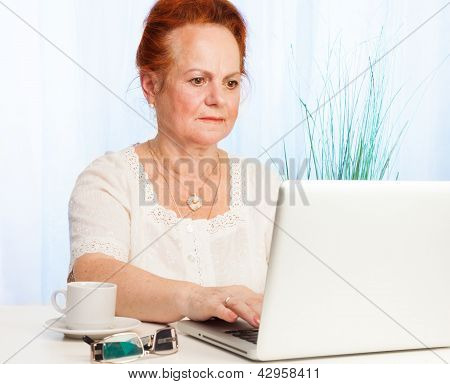 Old Woman Using Internet