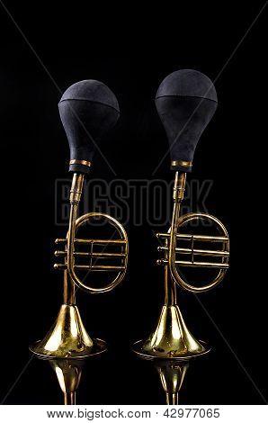 2 Horns