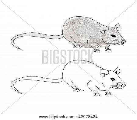 Cartoon Rat Doodle