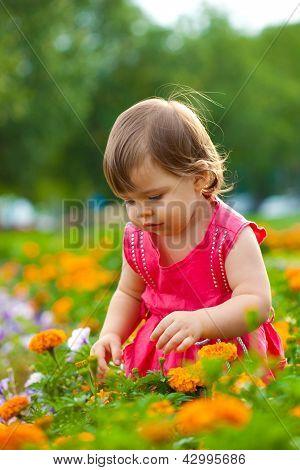 little girl in orange flowers