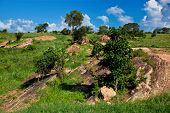 Grassland with rocks, savanna landscape in Africa. Tsavo West, Kenya.
