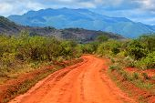 Red ground road and savanna landscape in Africa. Tsavo West, Kenya.