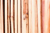 picture of partition  - Beautiful nature bamboo partition in oriental place - JPG