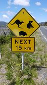 stock photo of promontory  - australian road sign - JPG