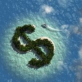 picture of sand dollar  - Dollar Sign Island - JPG