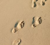 picture of footprints sand  - human footprints on the sea sand on the beach in Dubai - JPG