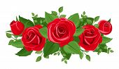 foto of rose bud  - Vector illustration of red roses - JPG