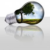 stock photo of photosynthesis  - bulb with a tree and a field inside - JPG