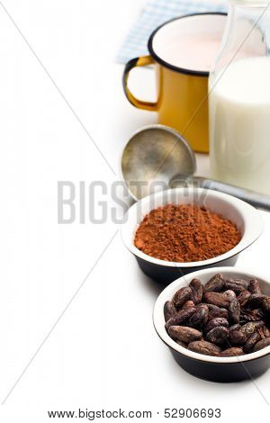 cocoa beans, cocoa powder and ingredients on white table