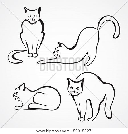 Cats vector collection