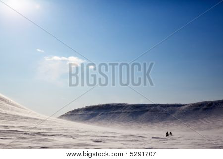 Barren Winter Landscape