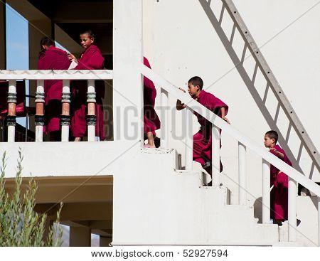 Tibetan Boys, Novice Buddhist Monks. India