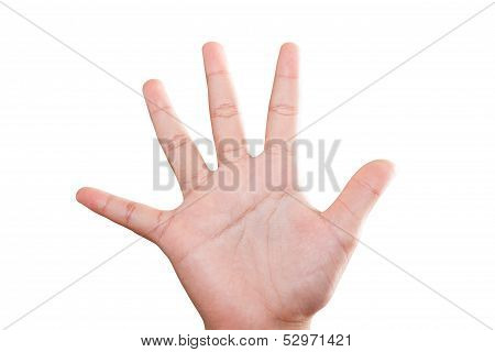 Woman Hand Isolated,  With Clipping Path.