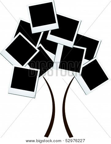 Photography objects tree