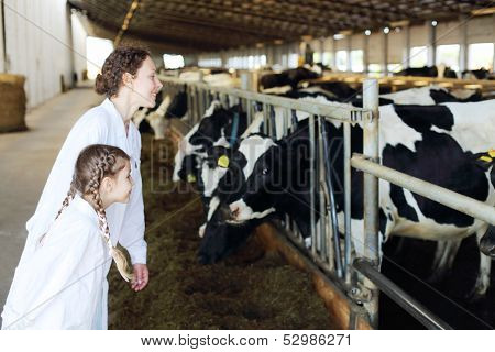Smiling mother and little daughter look at many cows in stall.