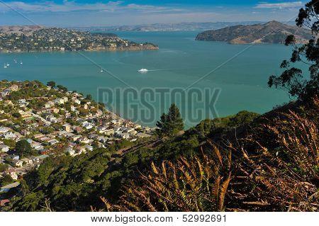 Sausalito Hillside, Belvedere, Angle Island, San Francisco Bay